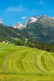 Szwajcarskie góry z zieleni ziemi krajobrazem Fotografia Royalty Free