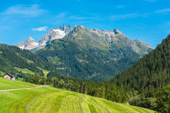 Szwajcarskie góry z zieleni ziemi krajobrazem Zdjęcia Royalty Free