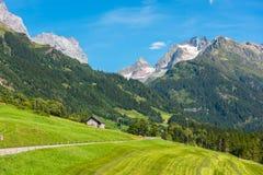 Szwajcarskie góry z zieleni ziemi krajobrazem Obrazy Royalty Free