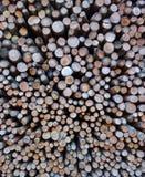 Szwajcarskiej rozpałki Drewniana sterta Zdjęcia Royalty Free