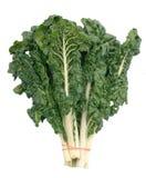 szwajcarzy chard zielony Zdjęcia Stock