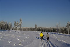 szwedów spaceru zima kraina cudów Zdjęcie Stock
