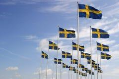 szwedzi bandery Fotografia Stock