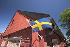 szwedzi bandery Zdjęcia Stock