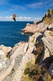 Szwedzi wybrzeże jak jastrząbka terytorium fotografia royalty free
