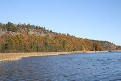 Szwedzka natura Fotografia Royalty Free