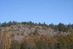 Szwedzka natura Zdjęcie Stock