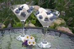 Szwedzki deser z czarnymi jagodami obrazy stock