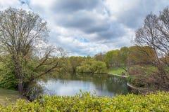 Szwedzki naturalny teren zdjęcie royalty free