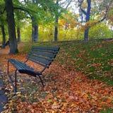 Szwedzkiej natury drewniana ławka Obrazy Royalty Free