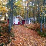 Szwedzkiej natury drewniani domy Zdjęcia Royalty Free