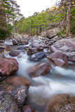 Szybka bieżąca Asco rzeka w Corsica zdjęcia stock