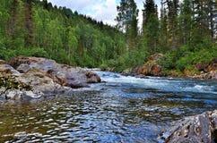 Szybka bieżąca halna rzeka wśród zwartych lasów i ogromnych kamieni Zdjęcia Royalty Free