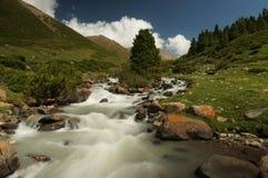 Szybka bieżąca rzeka w górach, Kirgistan obrazy royalty free