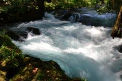 Szybka gwałtowna biała woda w rzece Zdjęcia Stock