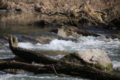 Szybka halna rzeka, czysta woda Obraz Stock