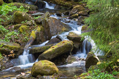 Szybka halna rzeka, wiosna w Carpathians, Ukraina fotografia royalty free