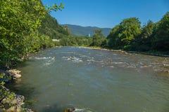Szybka halna rzeka z gwałtownymi i lasów brzeg Obrazy Royalty Free
