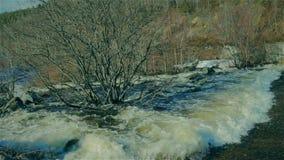 Szybka wiosny rzeka w Arktycznej tundrze zdjęcie wideo
