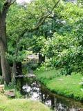 szybki bieżący bieg strumienia las Zdjęcia Royalty Free