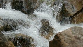 Szybki halny czysty rzeka przepływu zbliżenie zbiory wideo