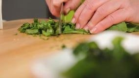 Szybki przecinanie ziele zbiory
