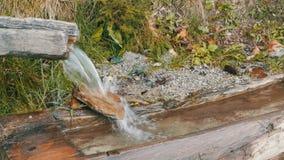 Szybki przepływ góry wody zakończenie w górę widoku Czysty halny strumień z jasną wodą płynie przez zielonego terenu zbiory