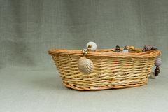 Szydełkowa kolia handmade z naturalną denną skorupą Obraz Stock