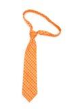 szyja odosobniony krawat Obraz Royalty Free