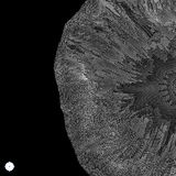 Szyk Z Dynamicznymi cząsteczkami 3D technologii styl abstrakcyjny tło Obrazy Stock