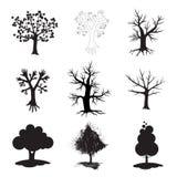 szyldowy drzewo Fotografia Stock