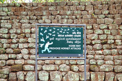 Szyldowy hałas może prowokować szerszenia ataka w ogródzie blisko Sigiriya (lew skała) zdjęcia royalty free