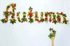 Szyldowy ` jesieni ` robić jesienni naturalni przedmioty Zdjęcie Royalty Free
