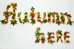 Szyldowy ` jesieni tutaj ` robić jesienni naturalni przedmioty Zdjęcia Stock