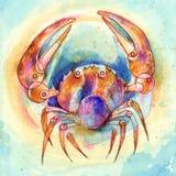 szyldowy nowotworu zodiak Obrazy Royalty Free
