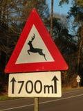 Szyldowy ostrzeżenie dla ewentualnej przyrody krzyżuje drogę obrazy royalty free