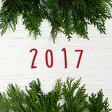 2017 szyldowy tekst na zielonej gałąź ramie na eleganckim białym Rus Fotografia Stock