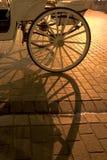 táxi Cavalo-conduzido Imagem de Stock Royalty Free