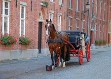 táxi Cavalo-conduzido em Bruges imagens de stock