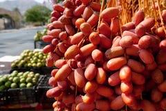 Tâmaras frescas no mercado de Jericho Fotografia de Stock Royalty Free