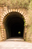Túnel Mont Serrat - bryska Ferrovia - Santa Catarina, Brasilien Arkivbilder