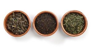 Tè verde, tè nero, tè bianco Zdjęcia Stock