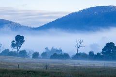Täckande berg för dimmig morgon Royaltyfria Foton