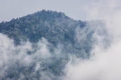 Täckande berg för mist och för moln och tropisk djungel Royaltyfri Foto