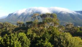 Täckande berg för moln Arkivfoto