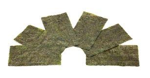 Täcker av av torr Seaweed royaltyfri foto