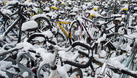 Täckt cykelsnö Royaltyfria Bilder