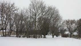 Täckt i vintersalighet royaltyfri fotografi