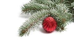 Täckt med snöfilialen av en julgran och en röd boll Arkivfoto