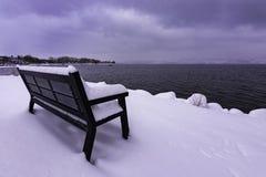 Täckt snö parkerar bänken på Okanagan sjön västra Kelowna British Columbia Kanada Royaltyfria Foton